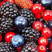 frutas-verm